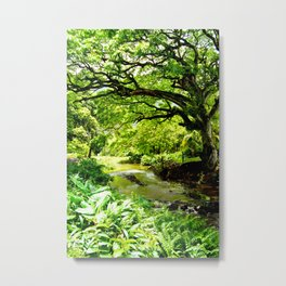 Hawaii Hidden Valley Metal Print