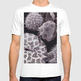 Tiny Universe T-shirt