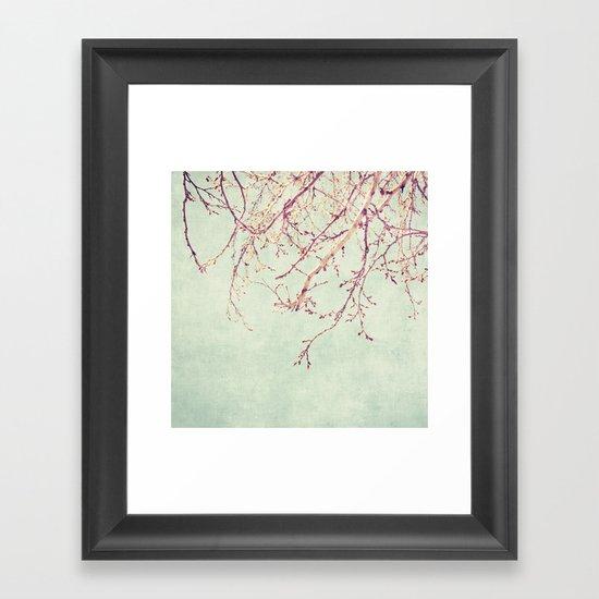 Chinese Spring Framed Art Print