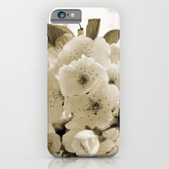 Cherry Blossoms Monochrome iPhone & iPod Case