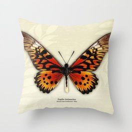 Butterfly14_Papilio Antimachus • male1 Throw Pillow