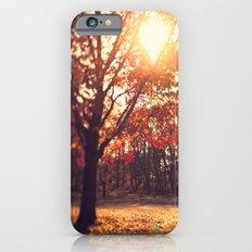 Autumn Sun  iPhone 6 Slim Case
