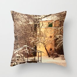 Wintry mood at the castle garden of Laupheim Throw Pillow