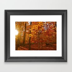 Soul of the Forest Framed Art Print