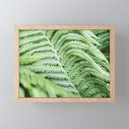 Fern 1 Framed Mini Art Print