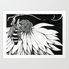 Bee & Coneflower Art Print