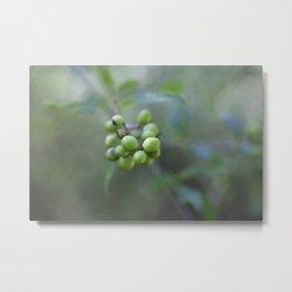 Green Burgeon Metal Print