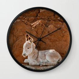 Baby Donkey Wall Clock