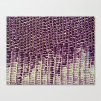 honeycomb Canvas Prints featuring Honeycomb by BellagioVista