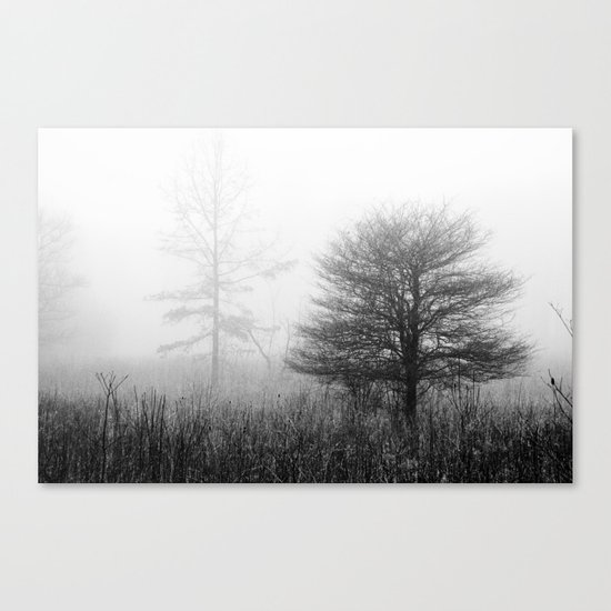 A Good Day Canvas Print