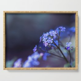 Jack Frost Floral Art - Siberian Bugloss Serving Tray