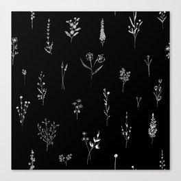 Black wildflowes Big Canvas Print