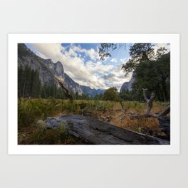 In the Valley. Art Print