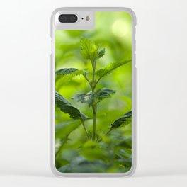 Fresh summer herbs in the garden Clear iPhone Case
