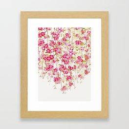 Cherry Blossom 1 Framed Art Print