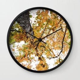 Fall Colors  //  Look Up Wall Clock