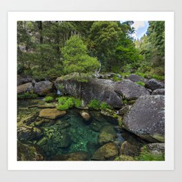 Mountain river with transparent water surrounded by trees Art Print