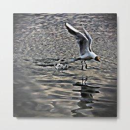 Splash Landing Metal Print