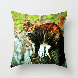 Cat the Huntress Throw Pillow