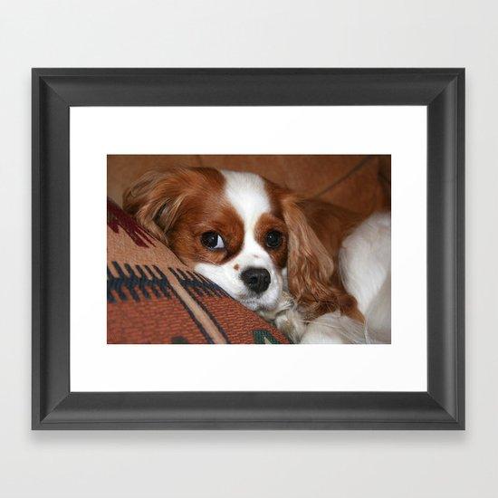 The Pup Framed Art Print