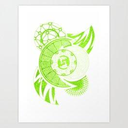 Foliation Art Print