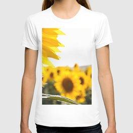 Sunflower's Season (I) T-shirt