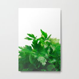 Parsley Metal Print