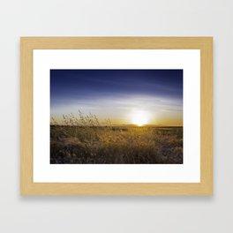 Field at Sunset Framed Art Print