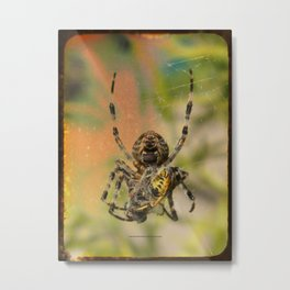 LUNCH WITH MR SPIDER 002 Metal Print