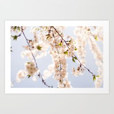 Finally! Spring! Art Print