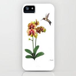 Hummingbird & Phalaenopsis iPhone Case