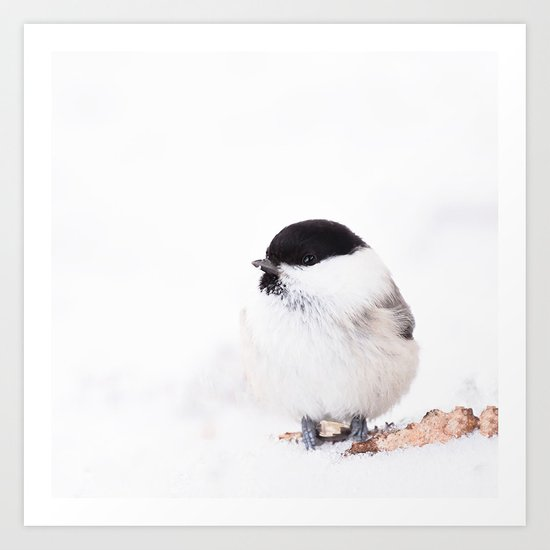 Cute Willow Tit sitting in the snow Art Print