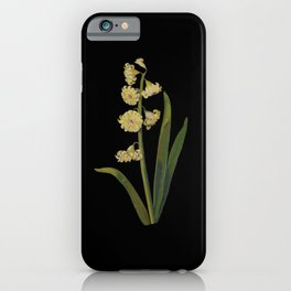 Hyacinthus Orientalis Ophir by Mary Delany Paper Collage Floral Flower Botanical Paper Mosaic Vintag iPhone Case