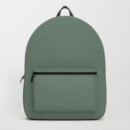 Sage Green Solid Backpack
