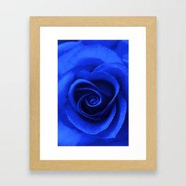 Indigo Rose Framed Art Print