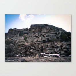 Pinecrest Rock Canvas Print