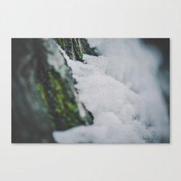 _DSC7070 Canvas Print