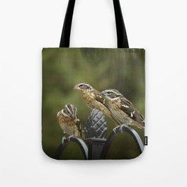 Grosbeaks Three Tote Bag