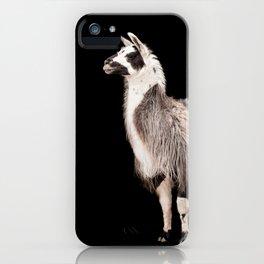 LAMA ( LLAMA) iPhone Case