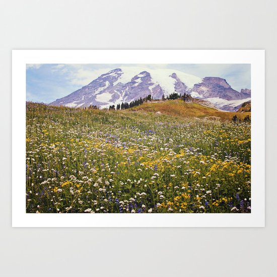 Rainier Flowers Art Print