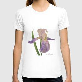 Purple Iris: Iris Germanica T-shirt