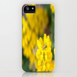 Yellow Lupin and a Ladybug iPhone Case