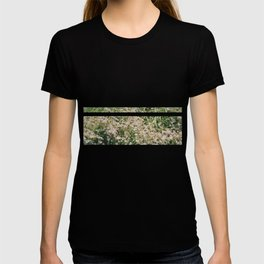 Bloomed T-shirt