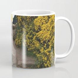 Path at Arthur's Seat Coffee Mug