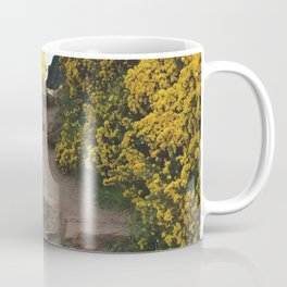 Path at Arthur's Seat Coffee Mug