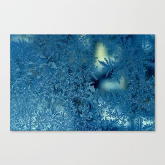 Frost patterns Canvas Print