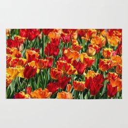 Field of Spring Tulips Rug
