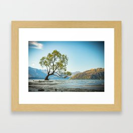 Wanaka Tree, New Zealand Framed Art Print