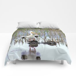 Pelican Pose Comforters