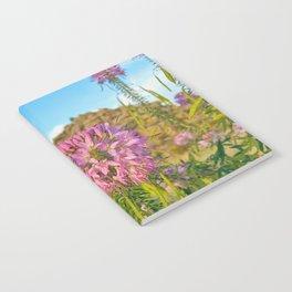 Colorado Wildflowers Notebook